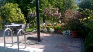 Park kép 2